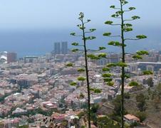 Santa Cruz de Tenerife   Puerto accesible